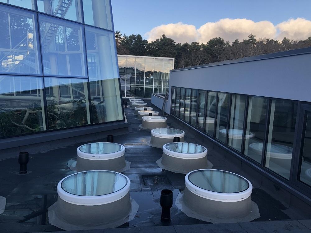 Botaaniaaed katuseaknad Katuse Profid OU
