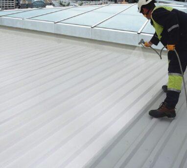 Plekk katuse värvimine. Triflex Metal Coat