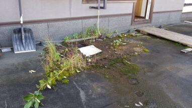 Katuse hooldust vajav koristamata prügi ja sammal lamekatusel